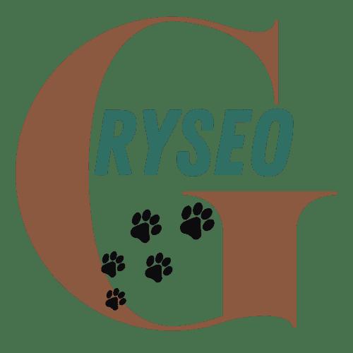 Logo Gryseo