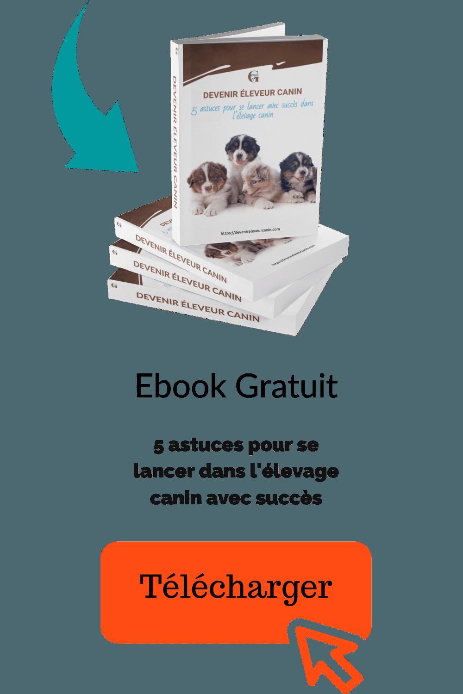 5-conseils-pour-se-lancer-dans-lelevage-canin